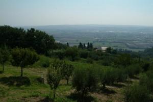 2005-2-Paolo02