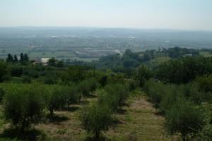2005-2-Paolo07