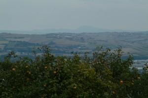 2005-3-Ritornano06